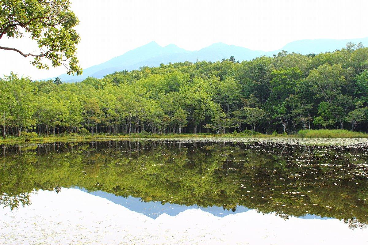 北海道day5_24