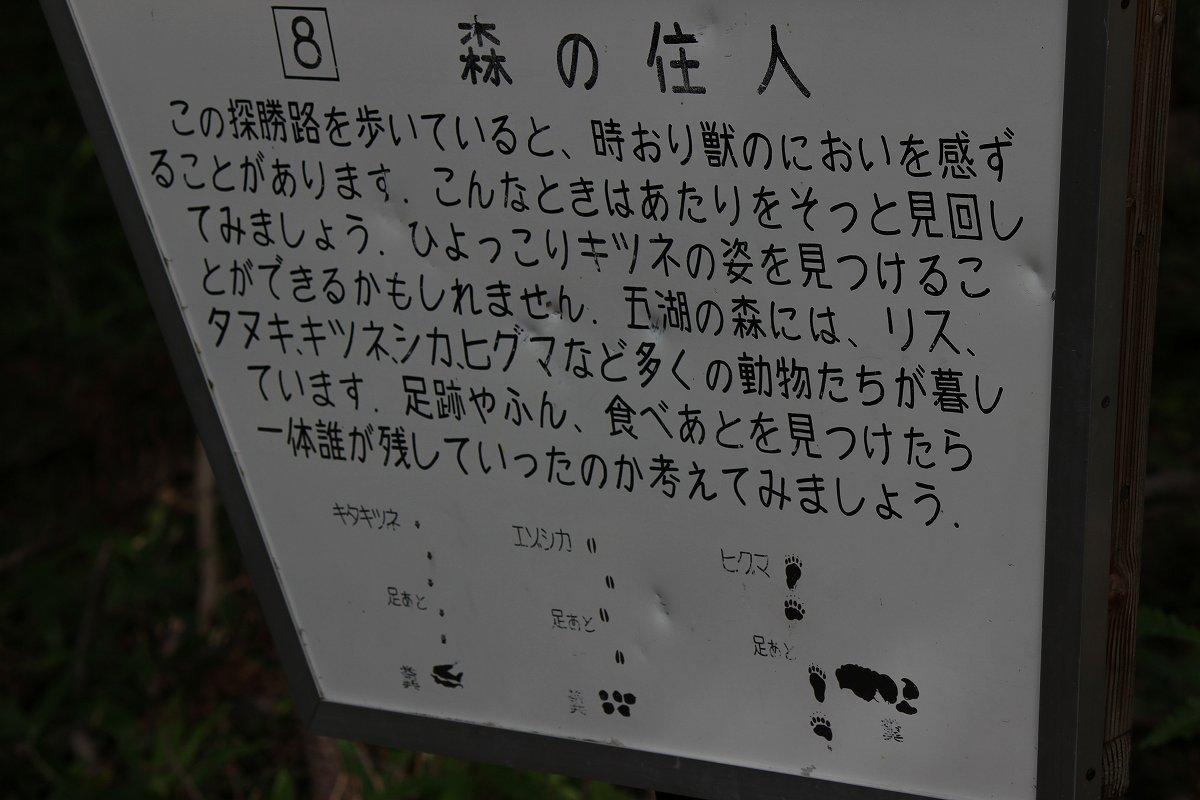 北海道day5_33