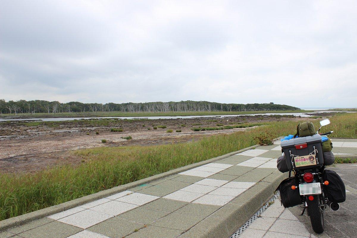 北海道day5_66