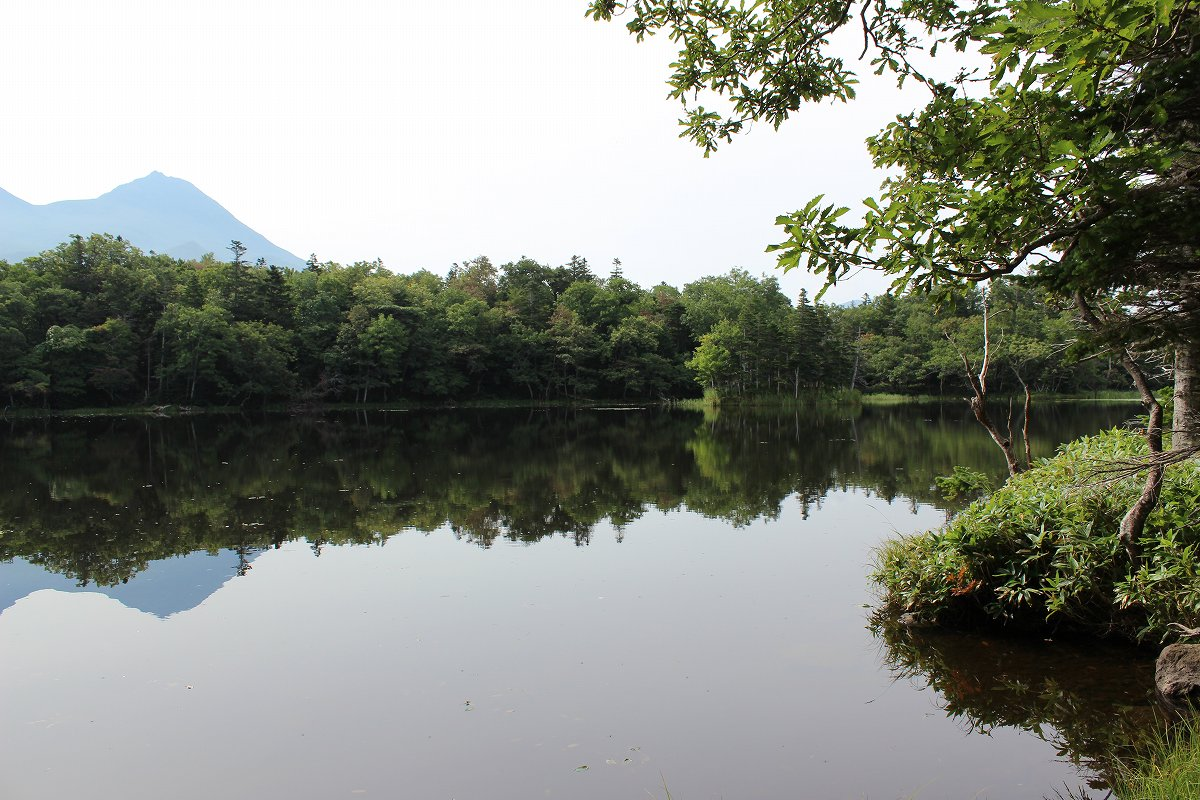 北海道day5_31