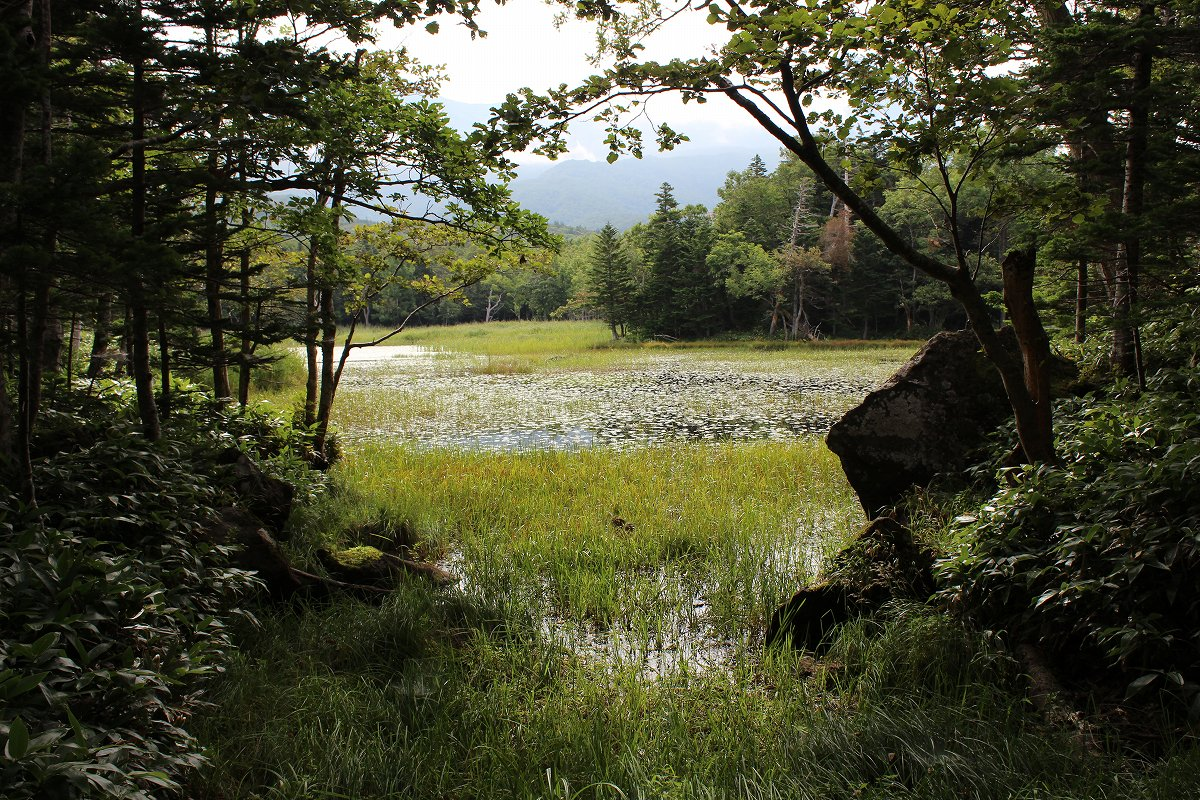 北海道day5_46