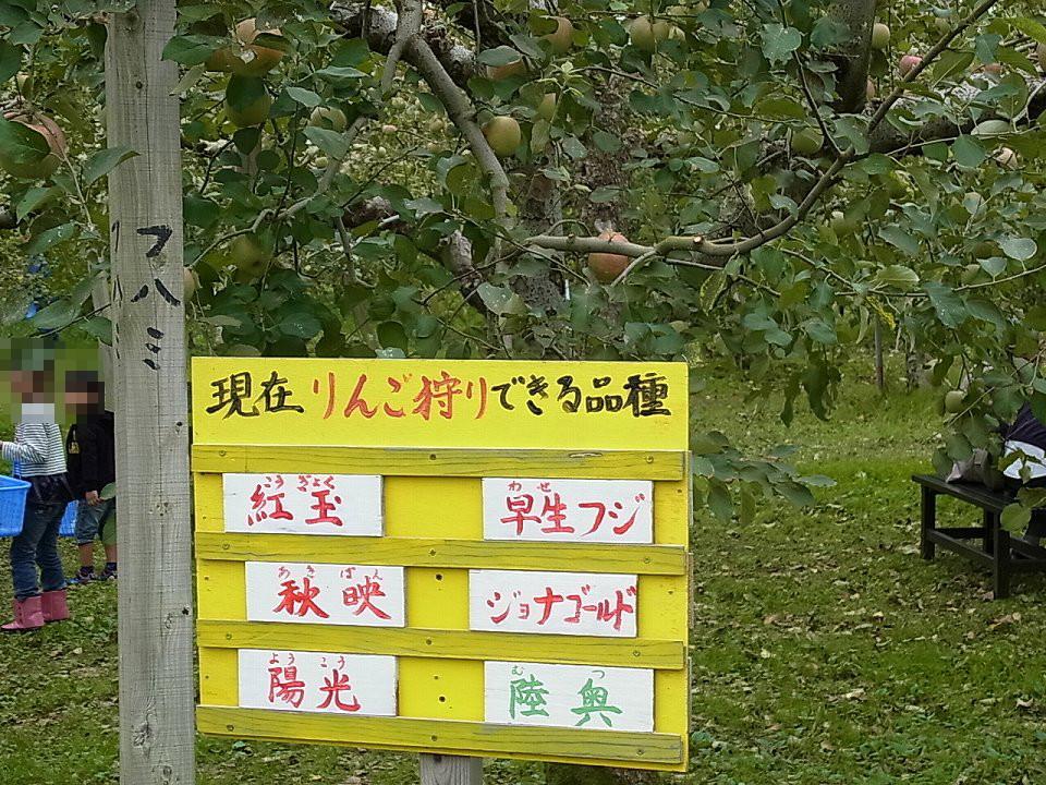 naganuma_rng003