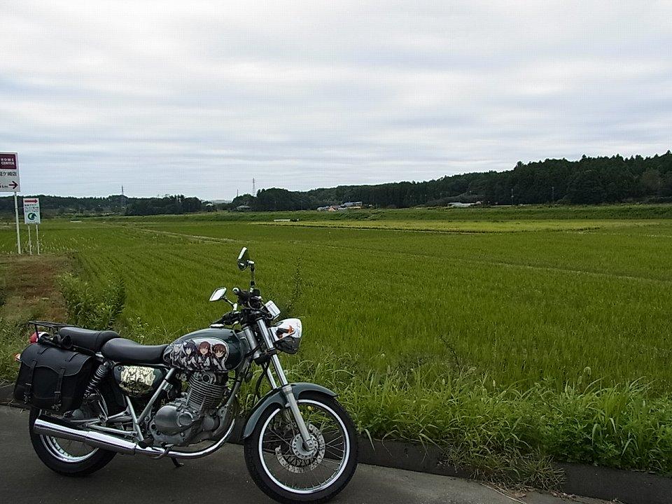 naganuma_rng014